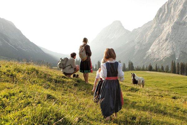 Familie auf Sommerwiese